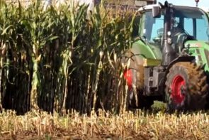 ensilage de maïs 2015 fendt katana 65 (ATS)